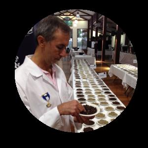 Chief coffee judge evaluating coffee quality.